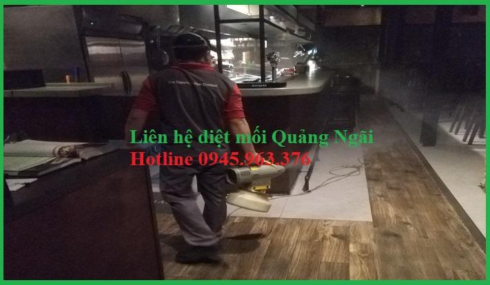 dich-vu-diet-moi-quang-ngai